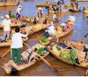 Ho Chi Minh tours ( Mekong Delta & Cu Chi Tunnels )